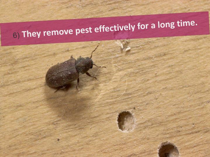They remove pest effectively for a long time.