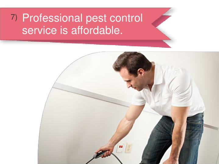 Professional pest control service is affordable.