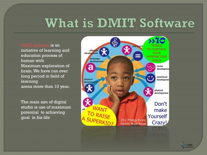What is DMIT Software