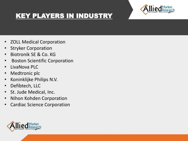 KEY PLAYERS IN INDUSTRY