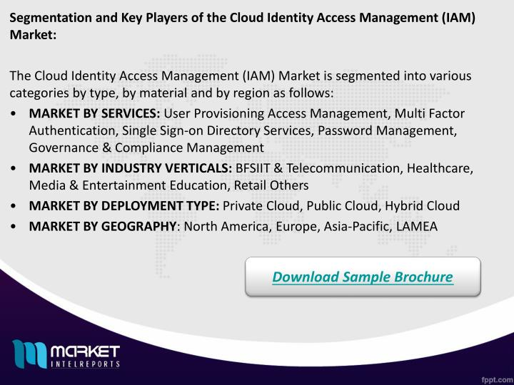 Segmentation and Key Players of the Cloud Identity Access Management (IAM) Market: