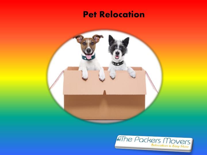 Pet Relocation