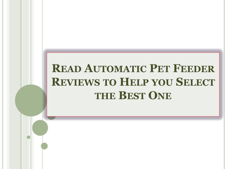 Read automatic pet feeder reviews to help you select the best one