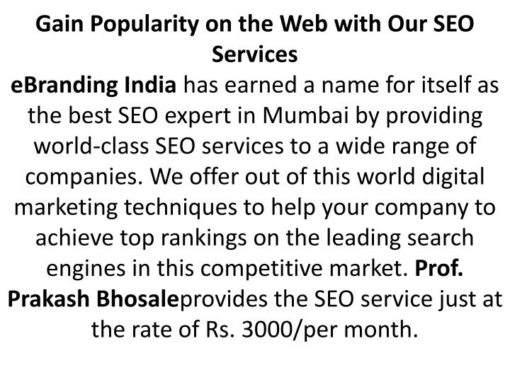 Gain Popularity on the Web with Our SEO Services