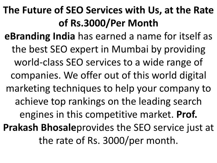 The Future of SEO Services with Us, at the Rate of Rs.3000/Per Month
