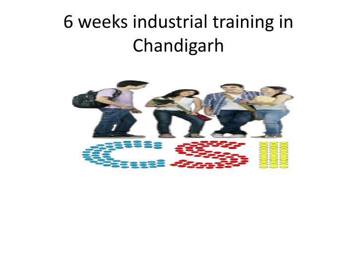 6 weeks industrial training in