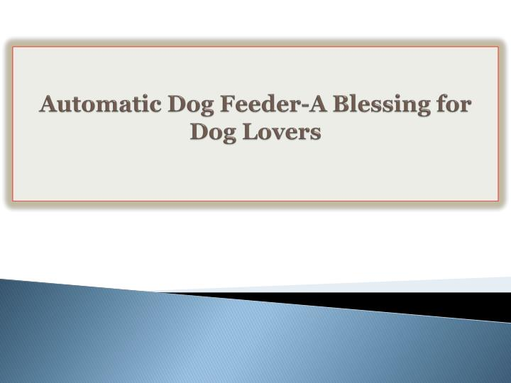 Automatic Dog Feeder-A Blessing for Dog