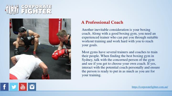 A Professional Coach