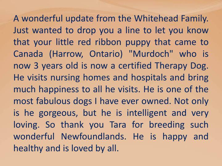 A wonderful update from the Whitehead Family.
