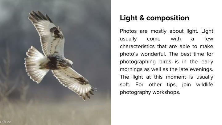 Light & composition