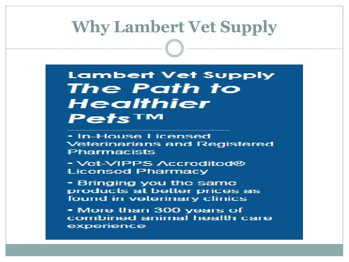 Why Lambert Vet Supply