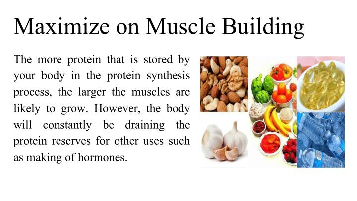 Maximize on Muscle Building