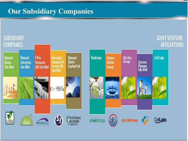 Our Subsidiary Companies