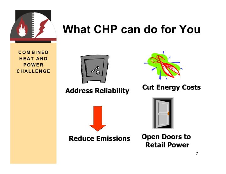 What CHP can do for You