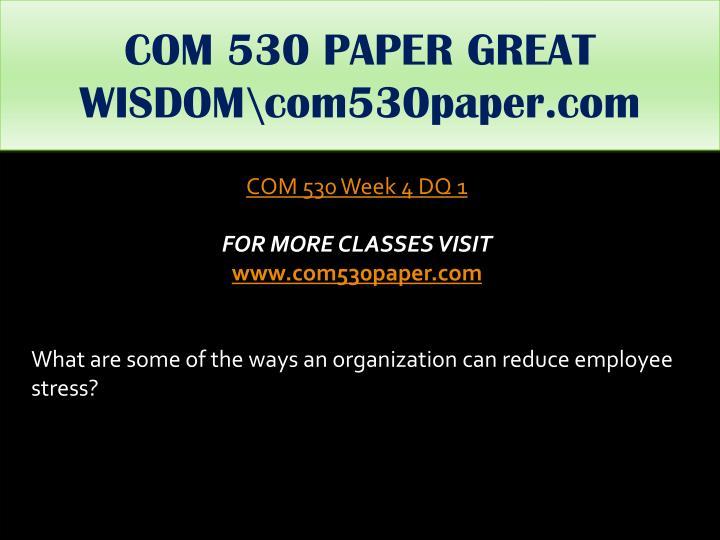 COM 530 PAPER GREAT WISDOM\com530paper.com