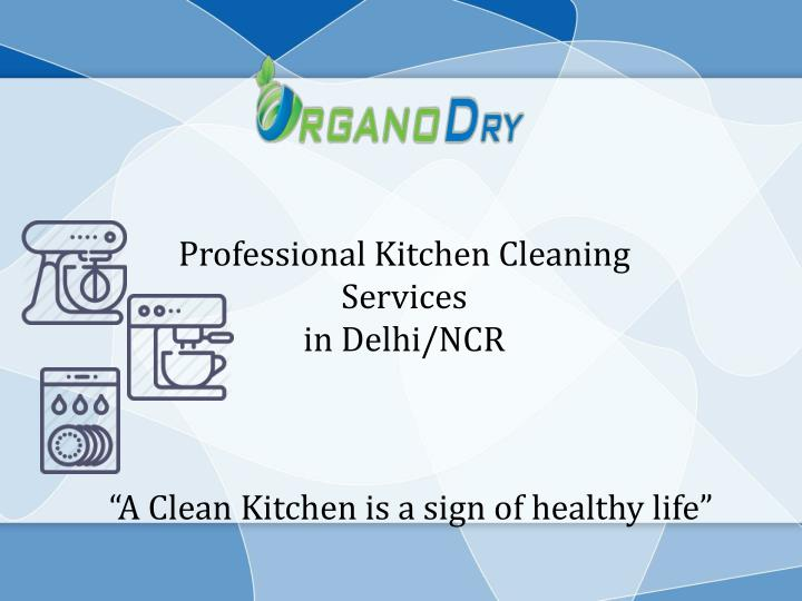 Professional Kitchen Cleaning Services