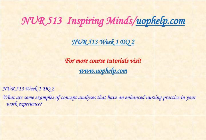 NUR 513  Inspiring Minds/