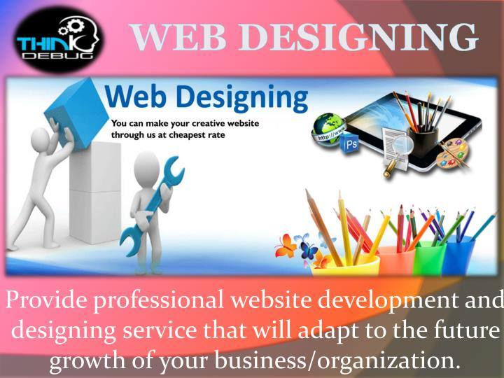 Provide professional website development and designing service that will adapt to the future growth ...