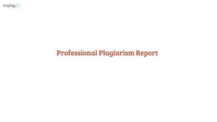 Professional Plagiarism Report