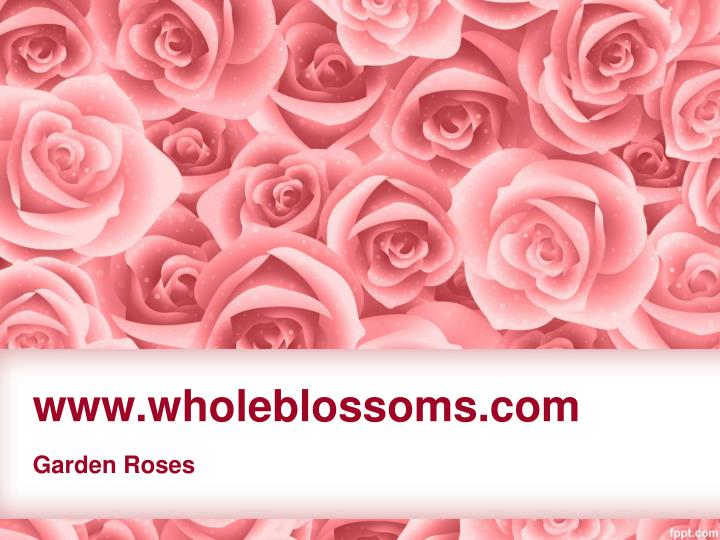Www wholeblossoms com