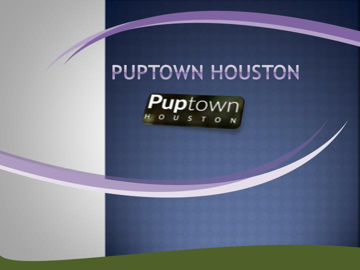 Puptown houston