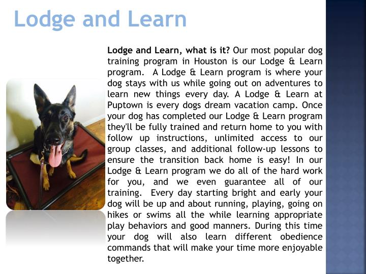 Lodge and Learn