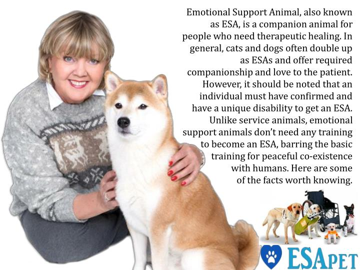 Emotional Support Animal, also known as ESA, is a companion animal for people who need therapeutic h...