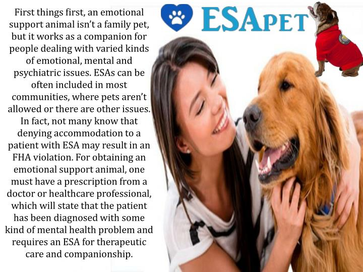 First things first, an emotional support animal isn't a family pet, but it works as a companion fo...