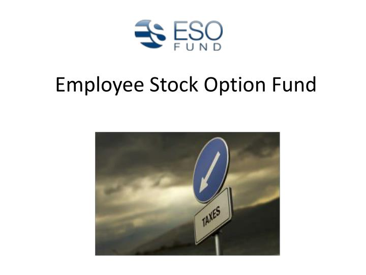 Employee Stock Option Fund