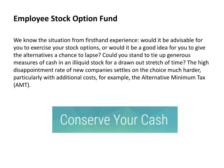 Employee stock option fund1