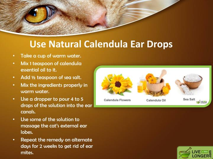 Use Natural Calendula Ear Drops