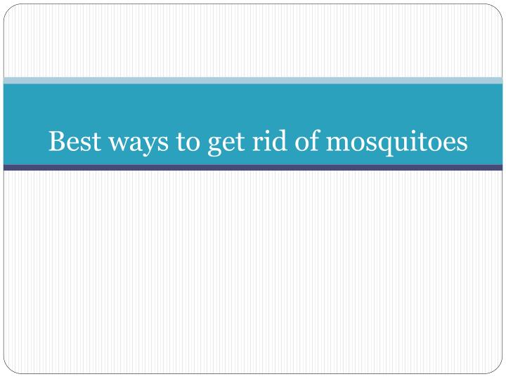 Best ways to get rid of mosquitoes