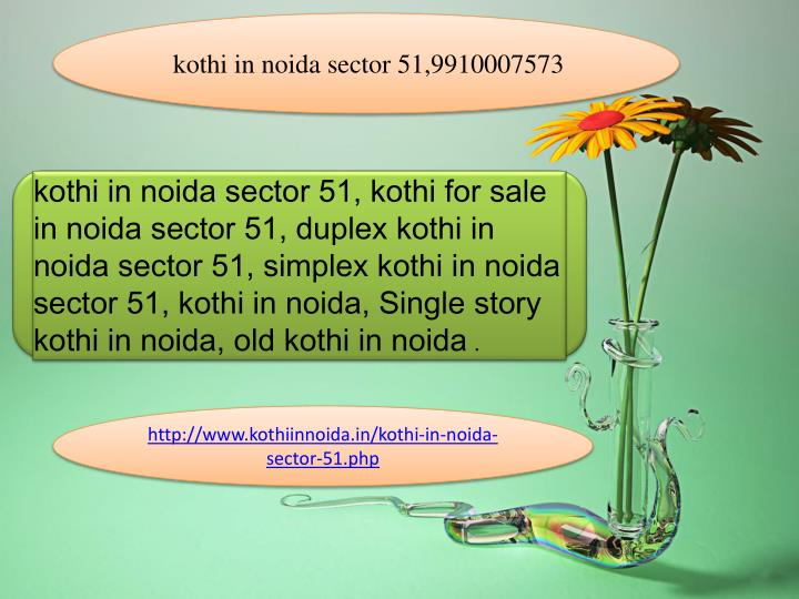 kothi in noida sector 51,9910007573
