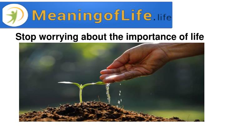 Stop worrying about the importance of life