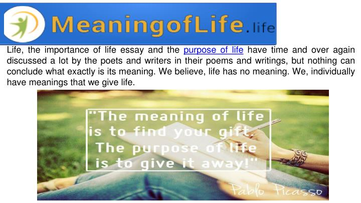 Life, the importance of life essay and the