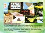 butterfly research center