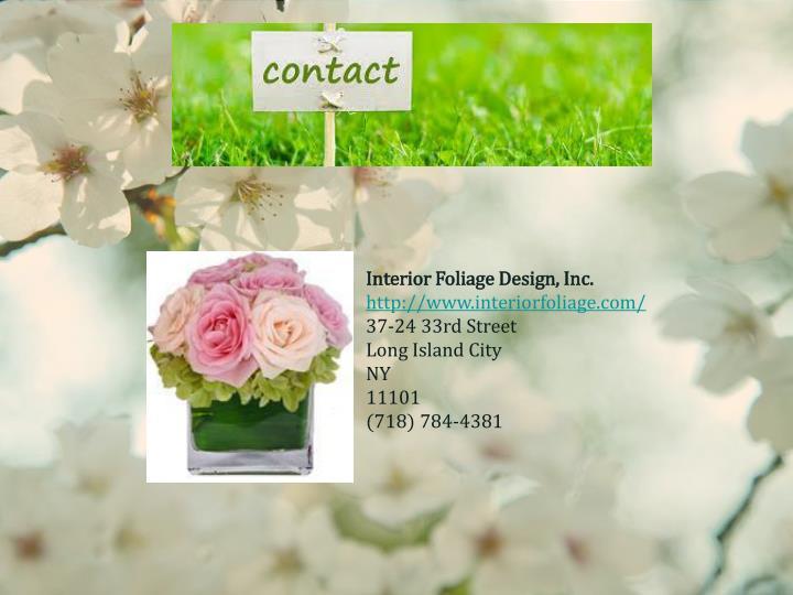Interior Foliage Design, Inc.