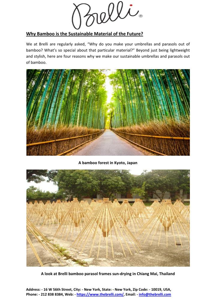 Why Bamboo is the Sustainable Material of the Future?