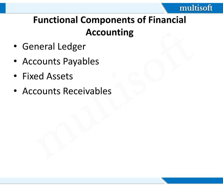 Functional Components of Financial Accounting