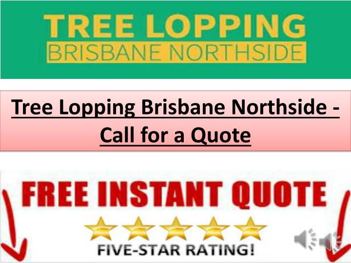Tree Lopping Brisbane Northside - Call for a