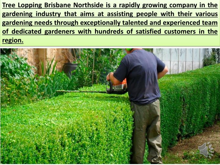 Tree Lopping Brisbane Northside is a rapidly growing company in the gardening industry that aims at ...