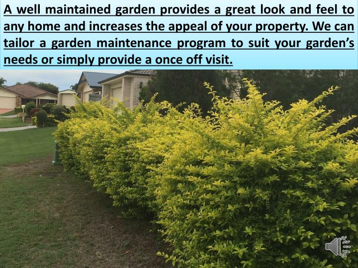 A well maintained garden provides a great look and feel to any home and increases the appeal of your property. We can tailor a garden maintenance program to suit your garden's needs or simply provide a once off visit.