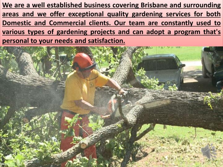 We are a well established business covering Brisbane and surrounding areas and we offer exceptional quality gardening services for both Domestic and Commercial clients. Our team are constantly used to various types of gardening projects and can adopt a program that's personal to your needs and
