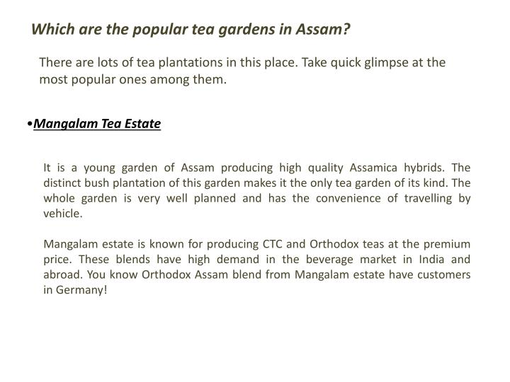 Which are the popular tea gardens in Assam?