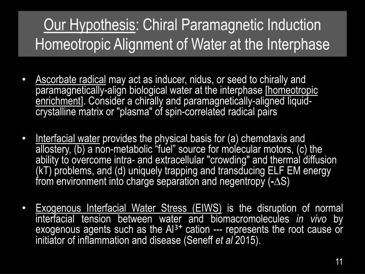 Our Hypothesis: Chiral Paramagnetic Induction