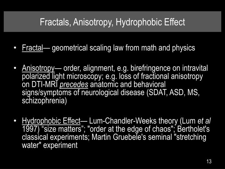 Fractals, Anisotropy, Hydrophobic Effect