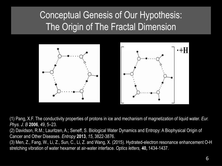 Conceptual Genesis of Our Hypothesis: