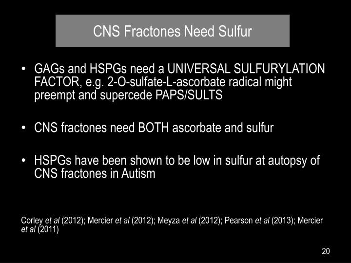 CNS Fractones Need Sulfur