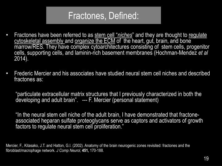 Fractones, Defined: