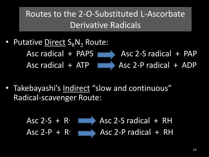 Routes to the 2-O-Substituted L-Ascorbate